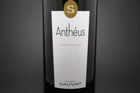 chardonnay anthéus sauvat 1